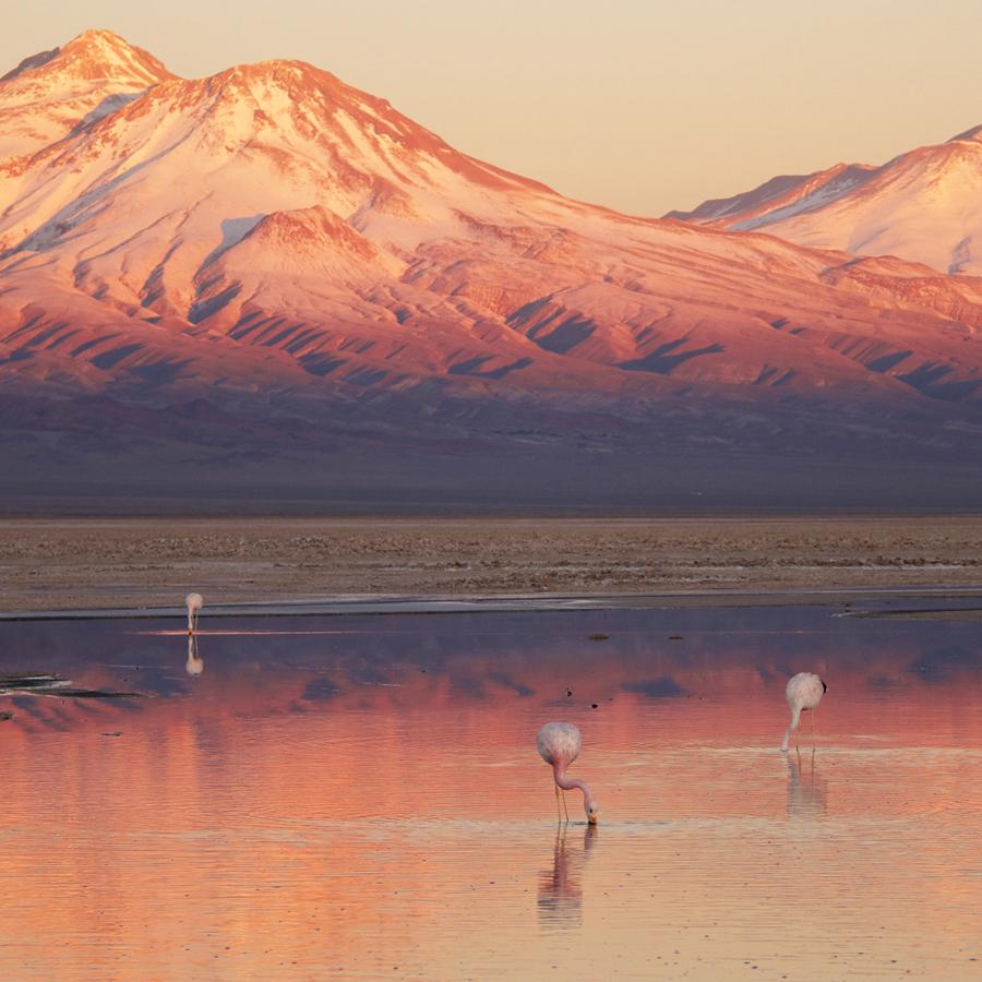 i-escape blog / Chile