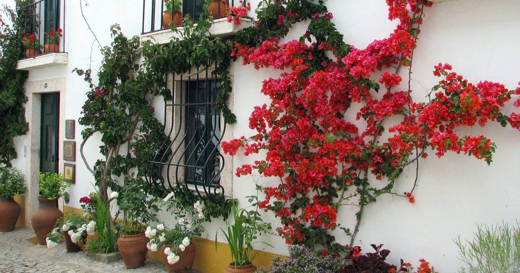 i-escape blog / Casa de Terena