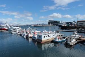 i-escape: Reykjavik