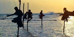 i-escape: Sri Lanka