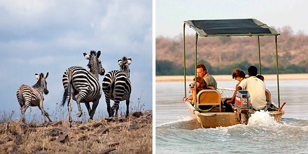 i-escape: Tanzania Safari