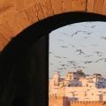 Back from… Essaouira