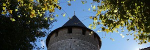 Just back from… Carcassonne