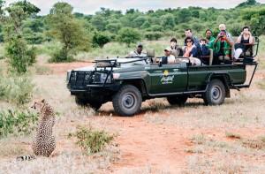 i-escape blog / Makalali Private Game Reserve