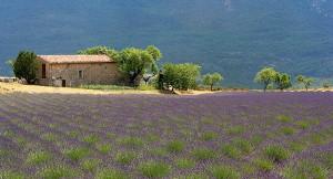 i-escape blog / Provence