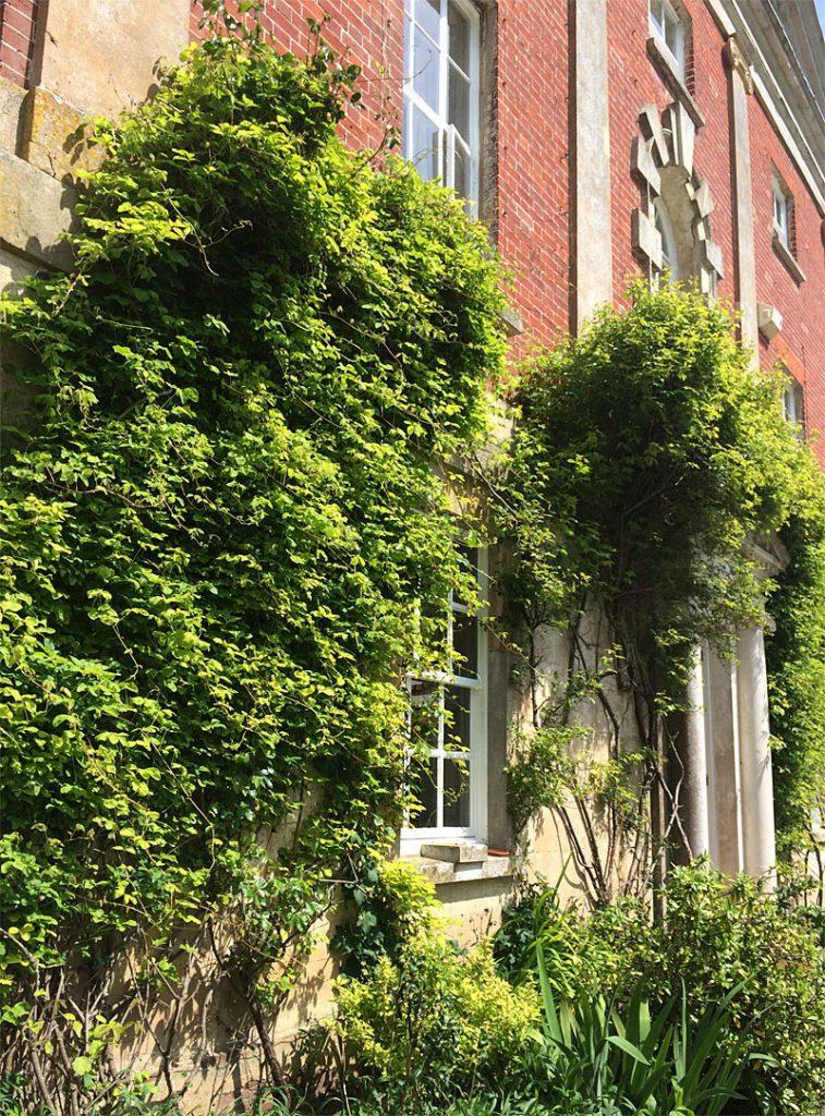 i-escape blog / 10 Castle Street UK