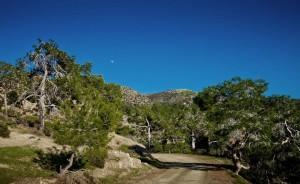 i-escape blog / Troodos Mountains
