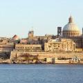 Valletta-larfe
