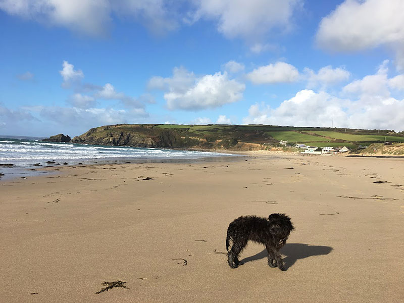 i-escape blog / Just back from dog-friendly hotels Cornwall / Praa Sands, Cornwall