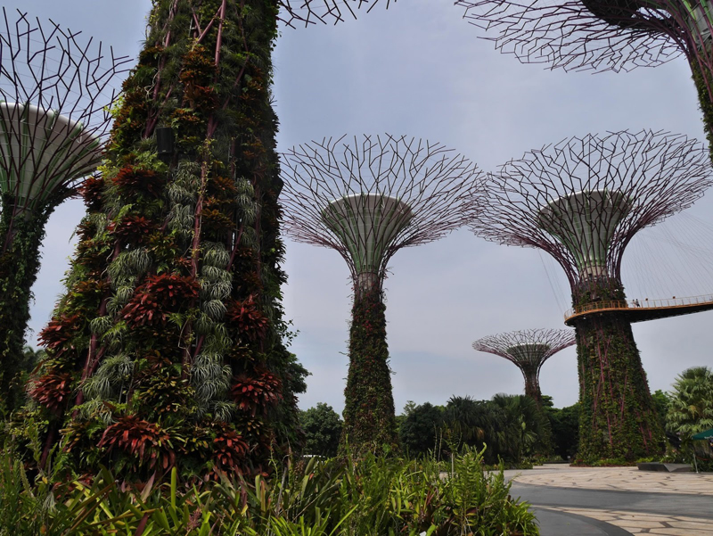 i-escape blog / Exploring Singapore and the Malaysian islands