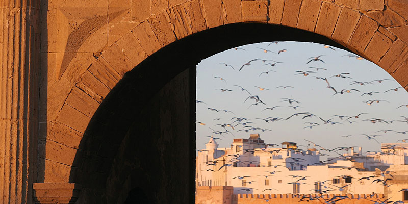 i-escape blog / i-escape's year in travel / Essaouira