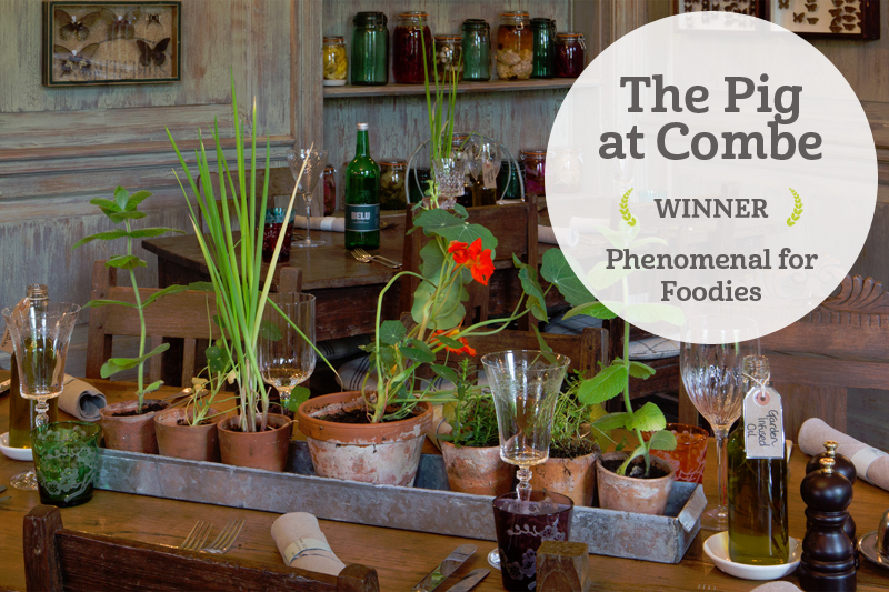 i-escape blog / i-escape Extra Mile Awards Winners 2016 / The Pig at Combe