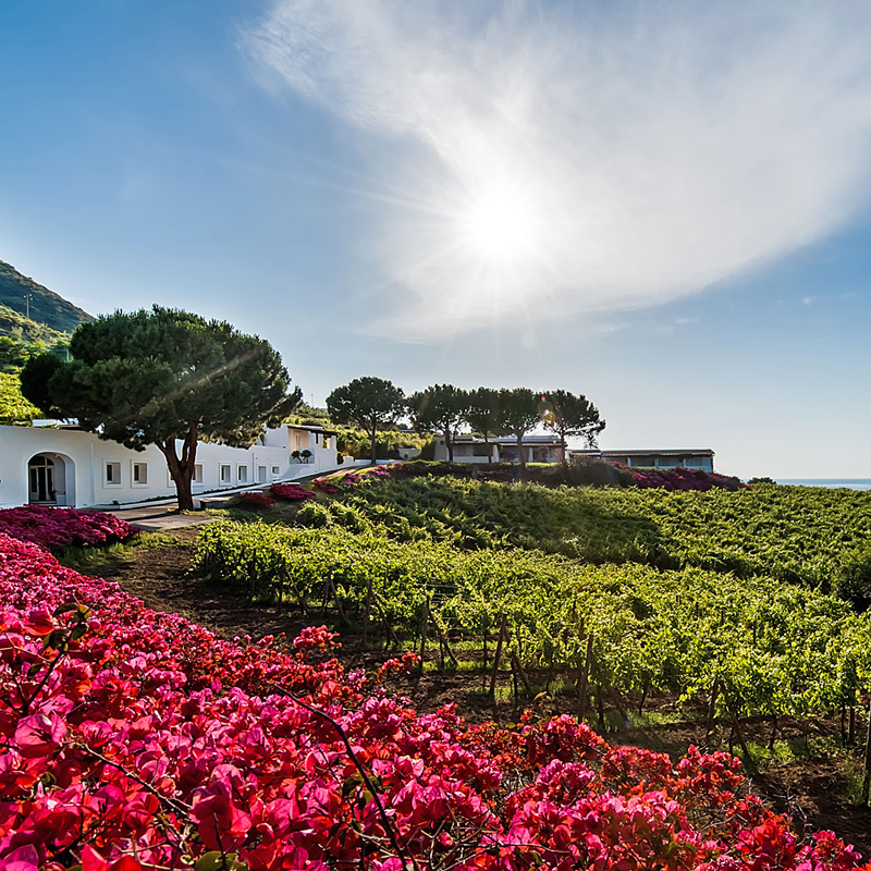 Boutique hotels salina aeolian islands for Salina sicily things to do