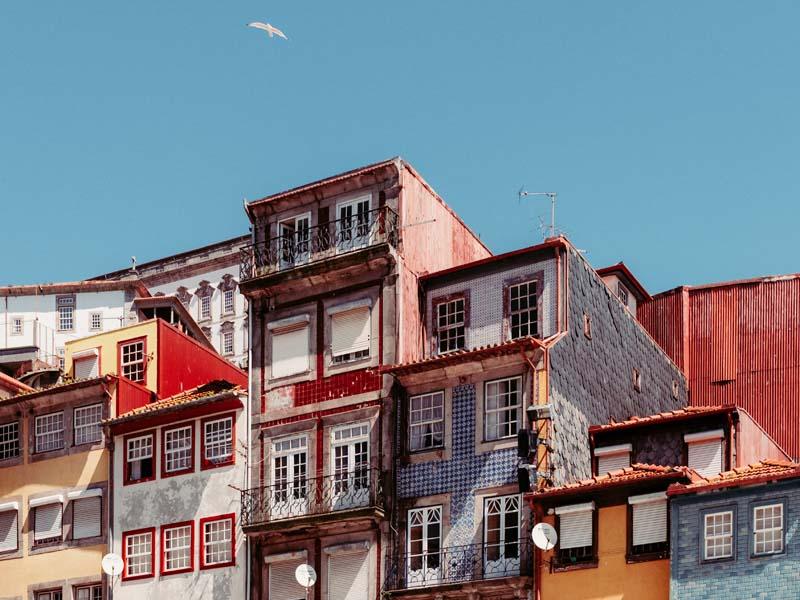 The i-escape blog / Why Porto is perfect for a family city break / Porto