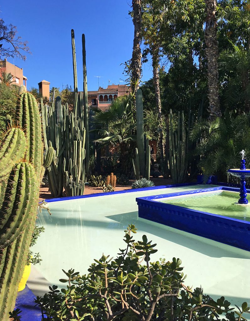 i-escape blog / Top Tips for Marrakech / Jardin Marjorelle Marrakech