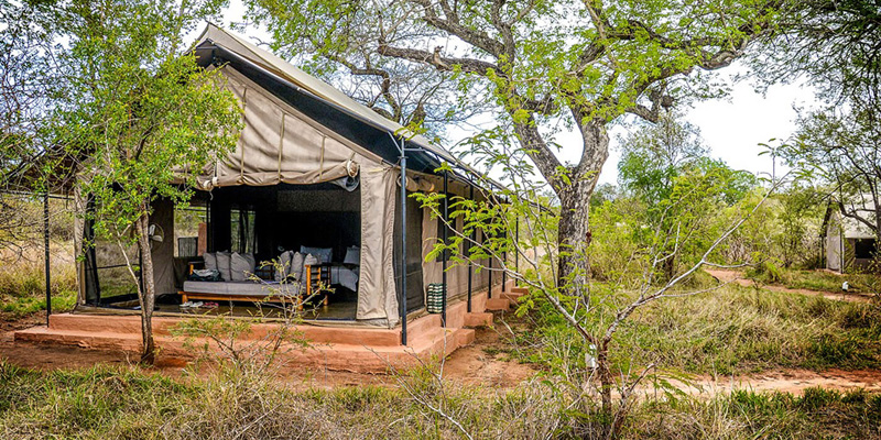 i-escape blog / Summer long-haul destinations / Honeyguide Tented Safari Camp, Kruger, South Africa
