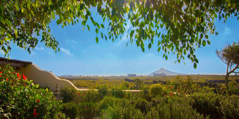i-escape blog / family-friendly hotels with summer availability / Casa Tomaren Lanzarote Canary Islands