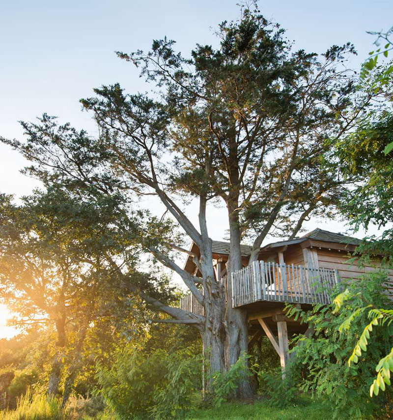 i-escape blog / Top 5 Luxury Treehouses / La Gree des Landes, Brittany, France