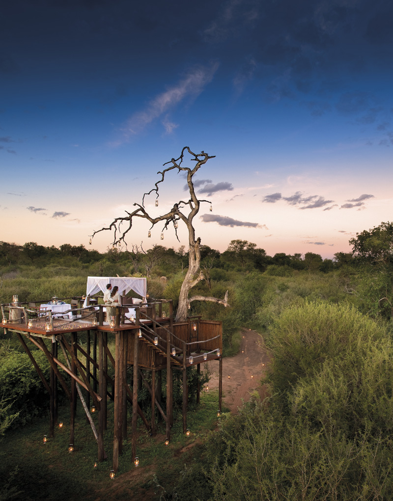 i-escape blog / Top 5 Luxury Treehouses / Lion Sands Ivory Lodge, Kruger, South Africa