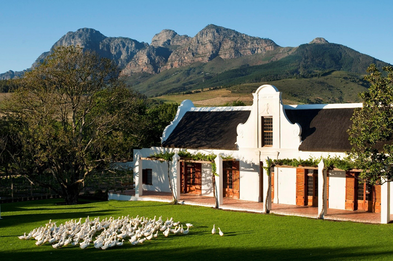 The i-escape blog / Top tips for South Africa's Cape Winelands and West Coast / Babylonstoren