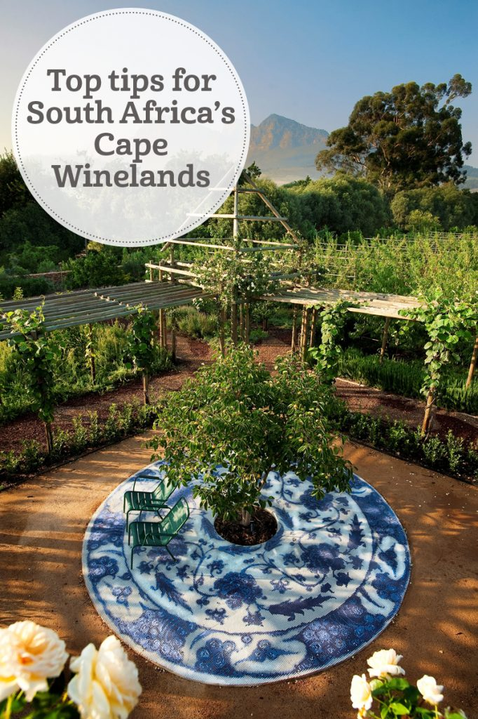 The i-escape blog / Top tips for South Africa's Cape Winelands and West Coast