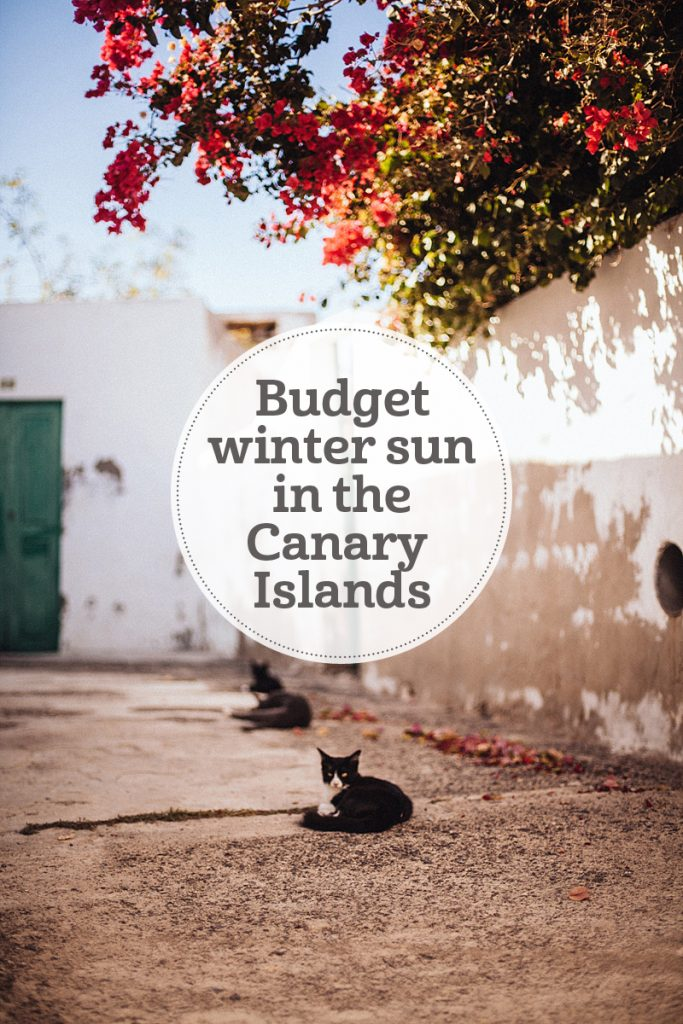 The i-escape blog / Four canary islands for budget winter sun