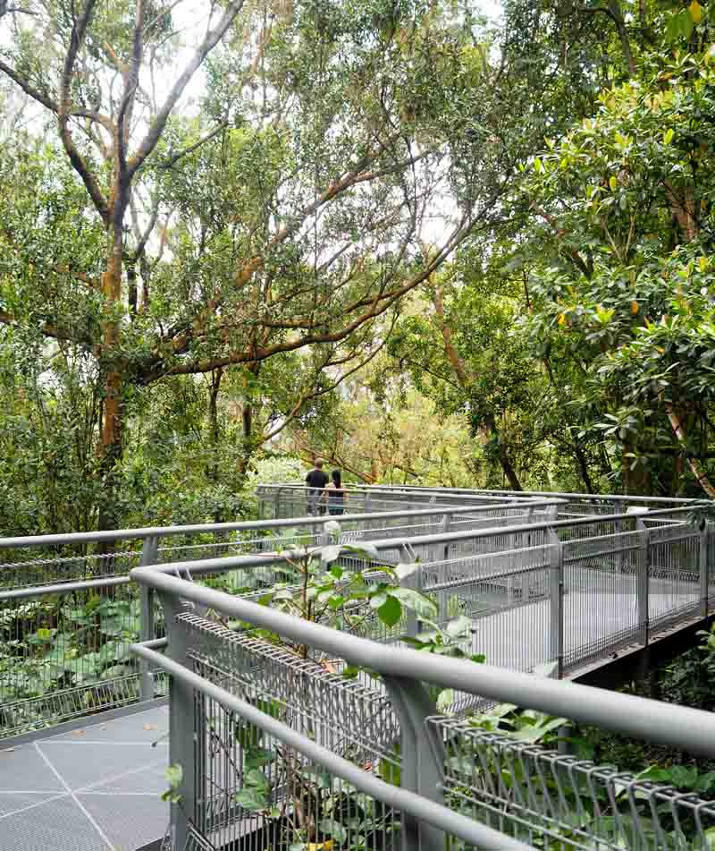 i-escape blog / Top things to do in Singapore / Southern Ridges
