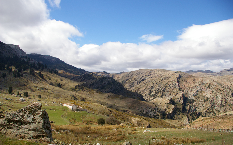 the i-escape blog / the expert view: hiking in andalucia / sierra de las nieves