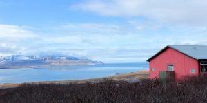 the i-escape blog / European holidays with amazing wildlife / Hotel Glymur