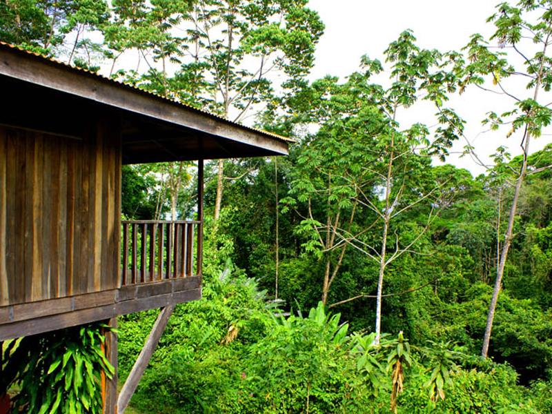 i-escape blog / Up-close animal encounters for families / Luna Nueva Lodge