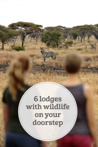 The i-escape blog / 6 lodges with wildlife on your doorstep