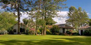 the i-escape blog / Planning an African Safari Honeymoon: 5 wildly romantic destinations / The Plantation Lodge