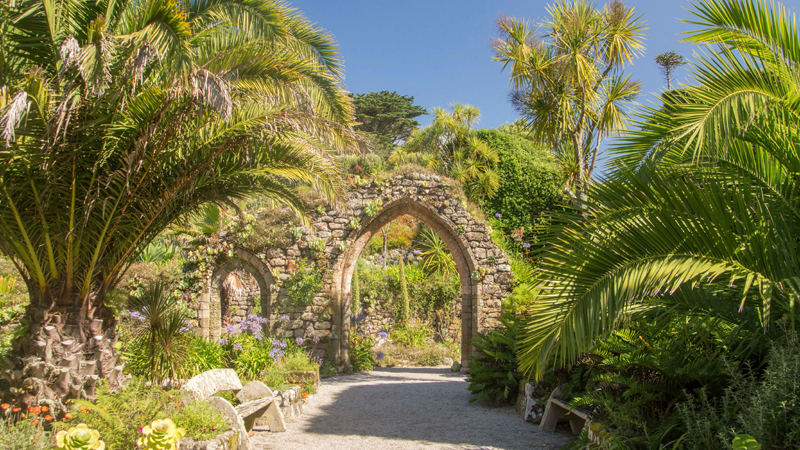 the i-escape blog / European holidays with amazing wildlife / Tresco Abbey Gardens