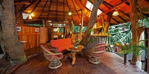 the i-escape blog / 10 cool and quirky places to stay from £27 a night / Tree House Lodge