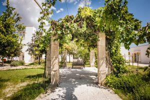 i-escape blog/ Where and when to enjoy Italy's harvest festivals / Furnirussi Tenuta