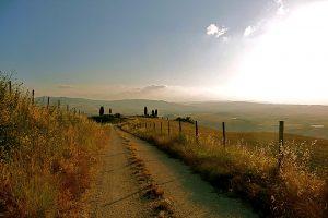 i-escape blog/ Where and when to enjoy Italy's harvest festivals / La Bandita