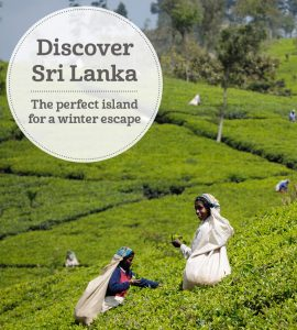 The i-escape blog / Discover Sri Lanka: the perfect island for a winter escape