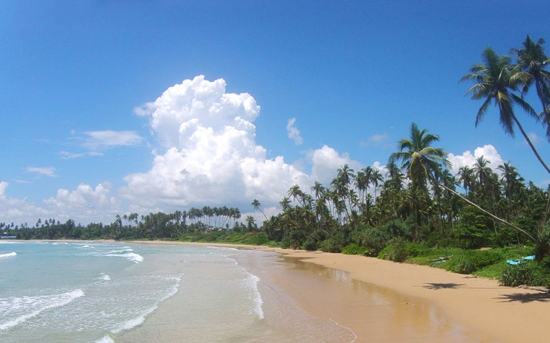 The i-escape blog / Discover Sri Lanka: the perfect island for a winter escape / Sri Lankan beach