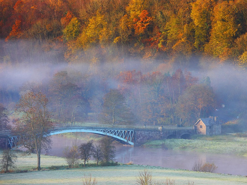 The i-escape blog / The 6 best places to see Britain's autumn colours / Forest of Dean
