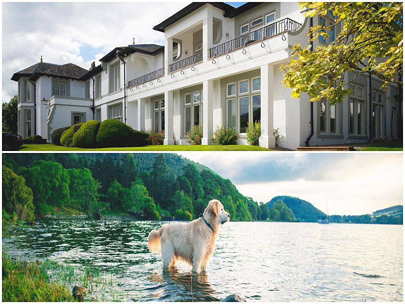The i-escape blog / 12 pet-friendly UK hotels loved by dogs / Another Place