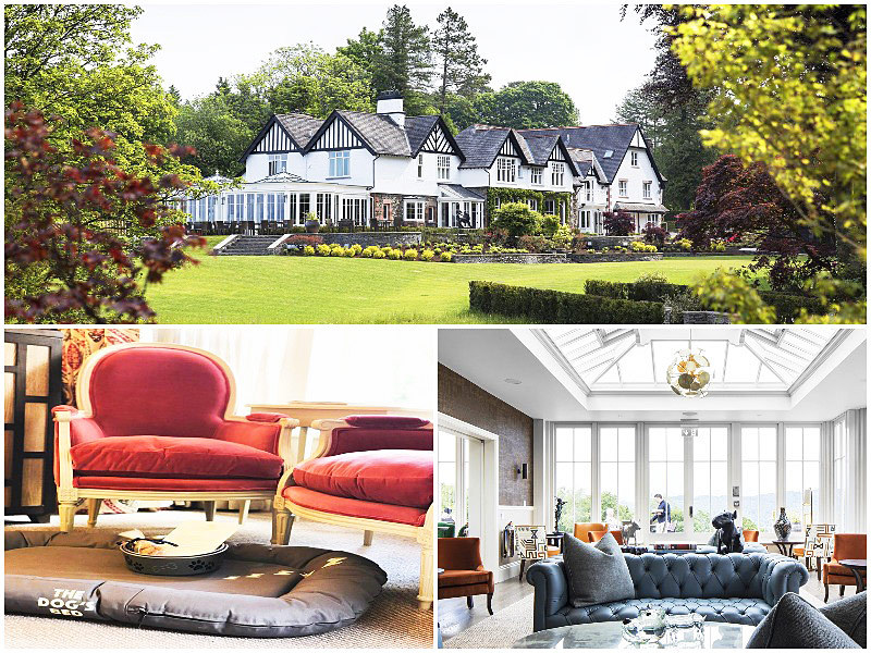 The i-escape blog / 12 pet-friendly UK hotels loved by dogs / Linthwaite House Hotel