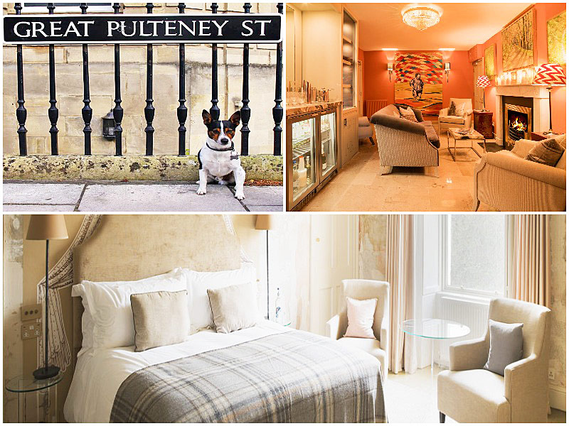The i-escape blog / 12 pet-friendly UK hotels loved by dogs / No 15 Great Pulteney