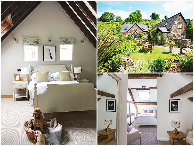 The i-escape blog / 12 pet-friendly UK hotels loved by dogs / Tudor Farmhouse