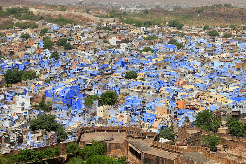 The i-escape blog / Rajasthan in 14 days: top tips for first-time travellers / Jodhpur - the Blue City