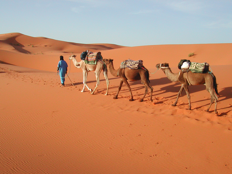 The i-escape blog / 7 Extraordinary Adventures for your Bucket List / Tailormade Tours Morocco