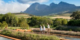 The i-escape blog / Cape Winelands with kids / Babylonstoren
