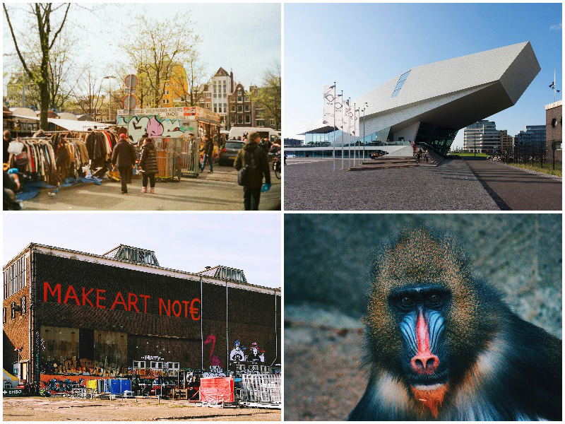 A hipster Guide to Amsterdam-Noord 2020-things to do