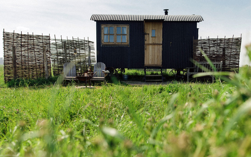 i-escape blog / 12 of the best family additions for 2019 / Elmley Nature Reserve