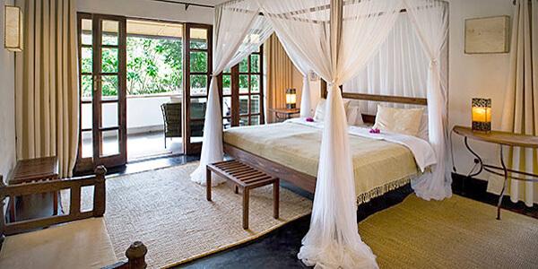 Room: Eucalyptus Cottage