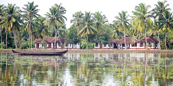 Philipkutty's Farm, India